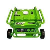 Gasoline Generator Set RG2800-1